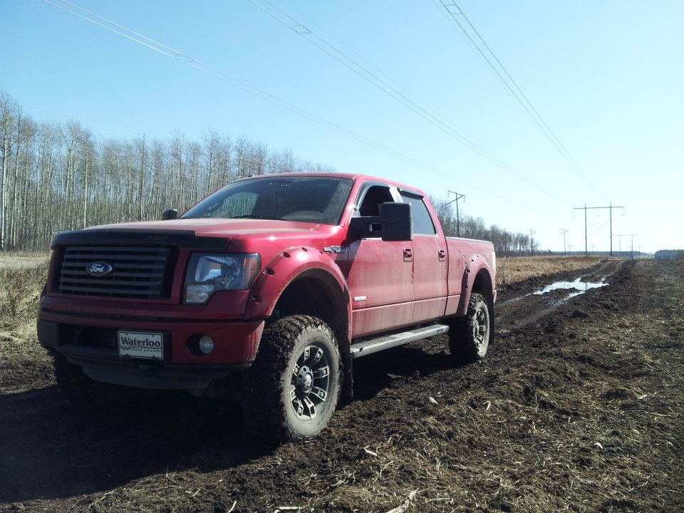 2011 candy red fx4 lifted - Red Ford F150 Lifted