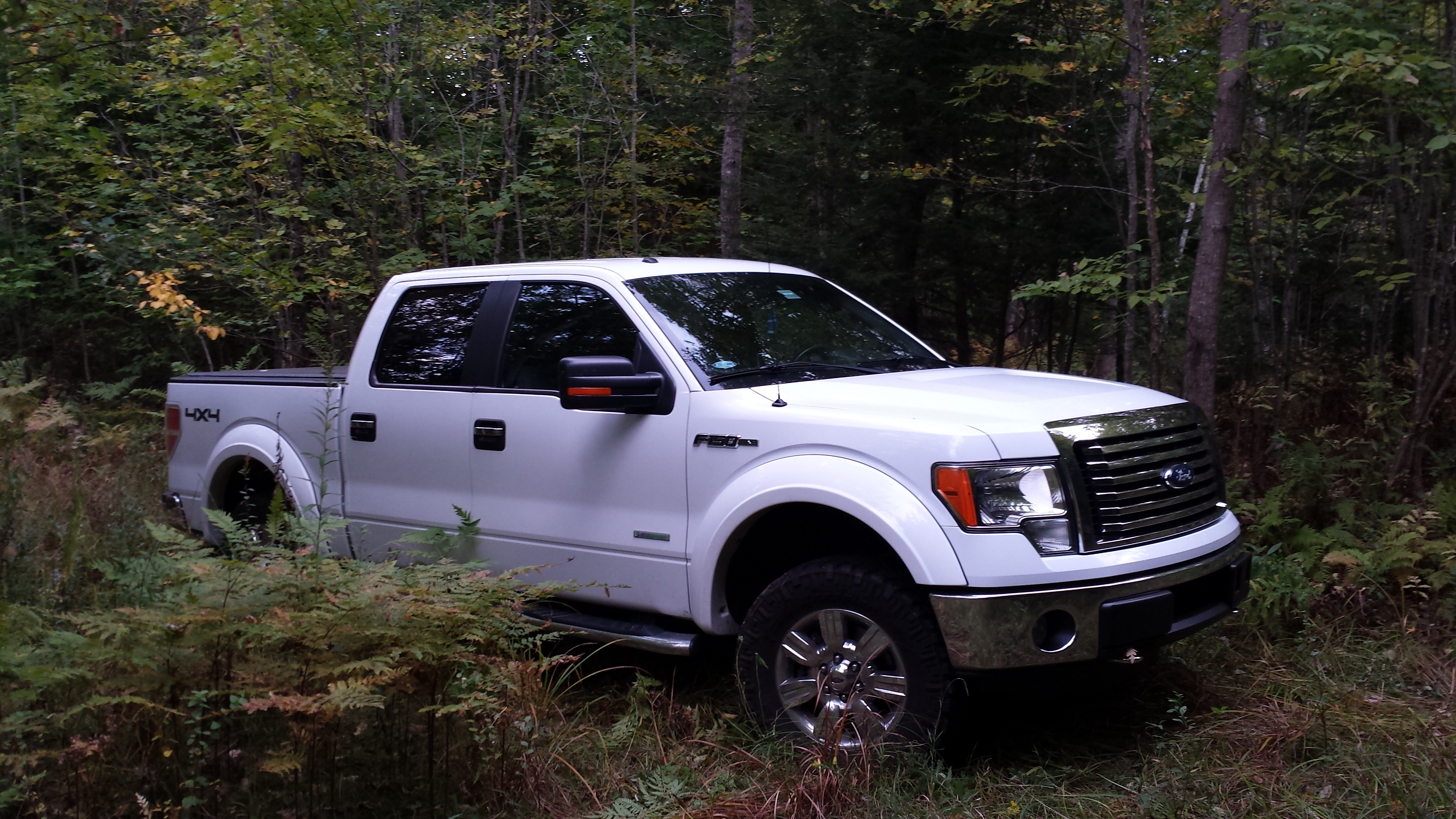 pictures of your customized white trucks please