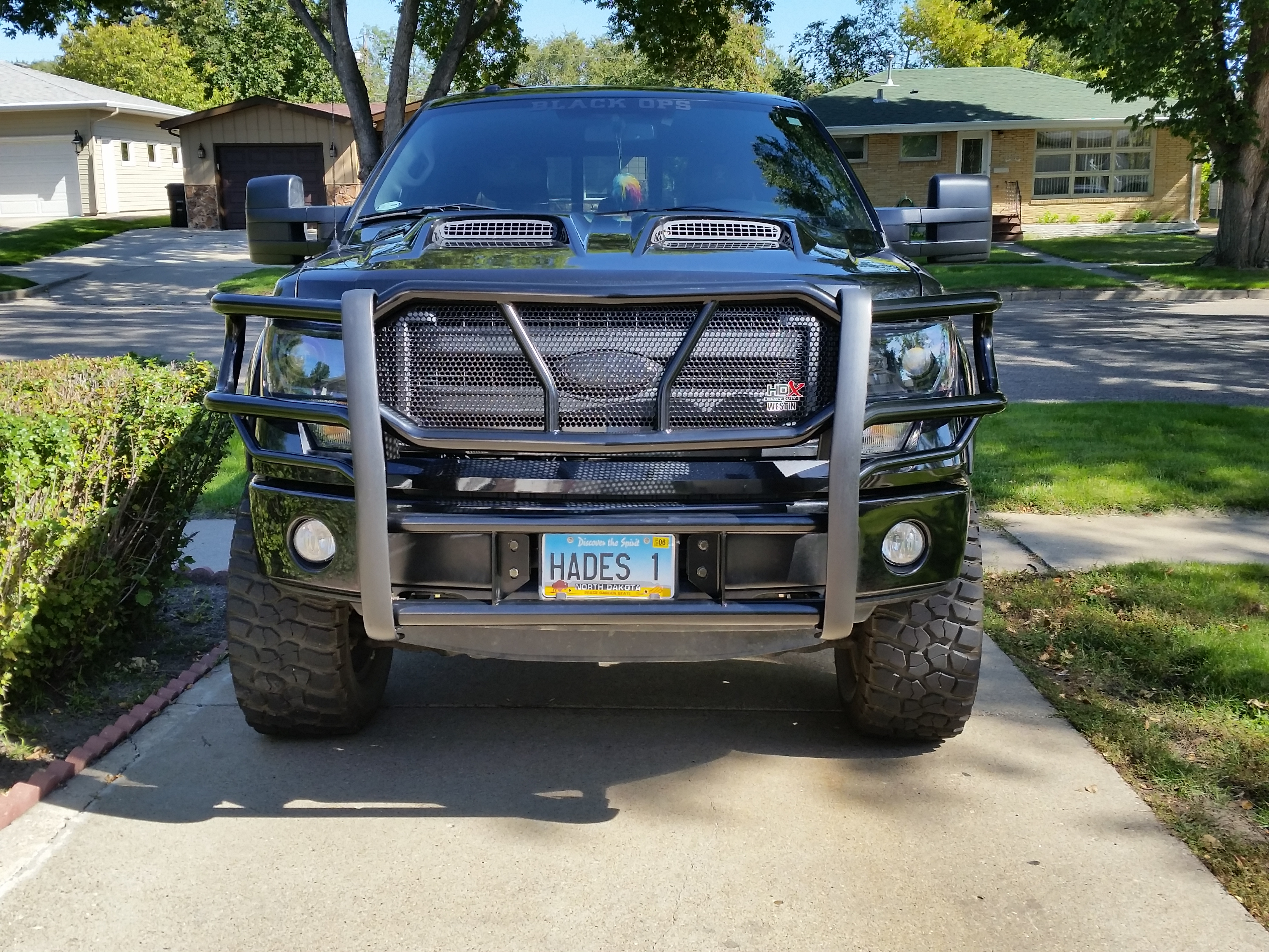 Smittybilt street light bar rigid dually pictures page 2 name my truckg views 14307 size 428 mb aloadofball Choice Image