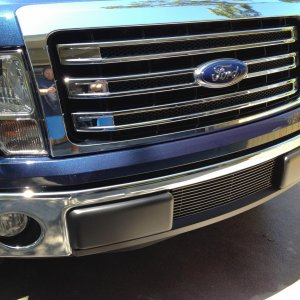 New lower bumper grill
